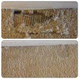 carpet repairs philadelphia