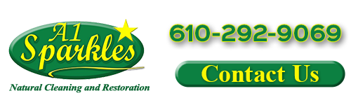 philadelphia suburbs cleaning company