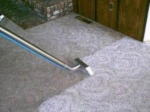 steem cleaner carpet cleaner