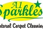carpet cleaning check list