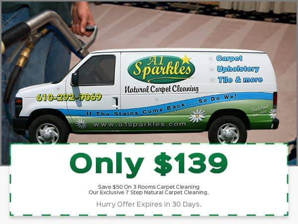 Holiday Carpet Cleaning Coupon